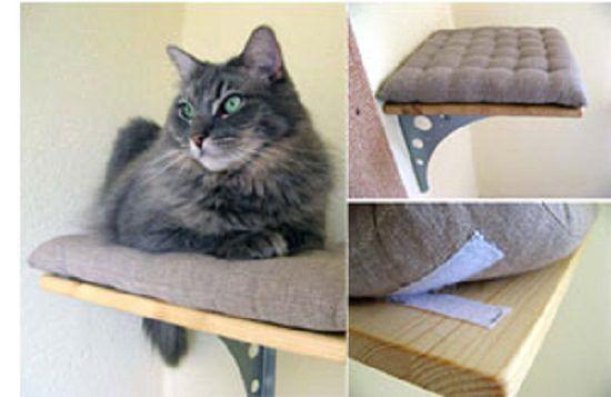 18 DIY Cat Shelves Ideas For Ultimate Cat Lovers