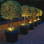 33 Inspiring Garden Lighting Design Ideas - 33DECOR