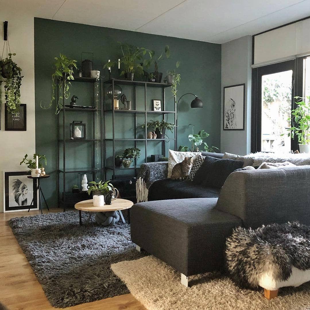 "@nifti.pics on Instagram: ""Gorgeous green living room. 💚 📷 by @mooiibo . . . . . . . . . . . #scandinavian #scandinaviandesign #scandinavianstyle #scandinavianhomes…"""