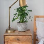 "A Mobile Plant Shop Owner's ""Muted Folky Boho"" Home"