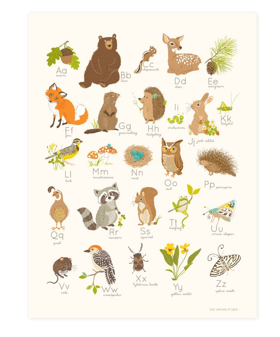 Baby Shower Gift – WOODLAND Forest Alphabet abc | 123- nursery wall art for kids