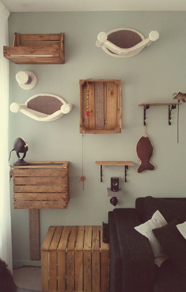 Cat Room Inspiration: Sweet Surprise For Your Furry Friend | Home Design And Interior