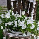 Garden Chairs for Your Breathtaking Outdoor Furniture - MORFLORA