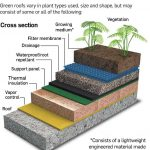Green roofs environmental benefits Green roofs can be advantageous for many reas...