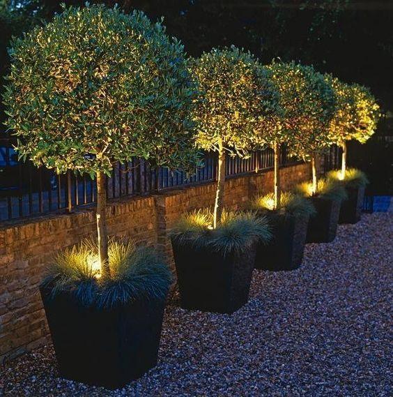 How Does Your Garden Glow? 12 Illuminating Outdoor Lighting Ideas