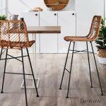 Quin Indoor Outdoor Barstool (Set of 2)