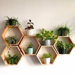 "Set of 6 Medium 5.5"" Deep Hexagon Shelves, Honeycomb Shelves, Floating Shelves, Geometric Shelves"