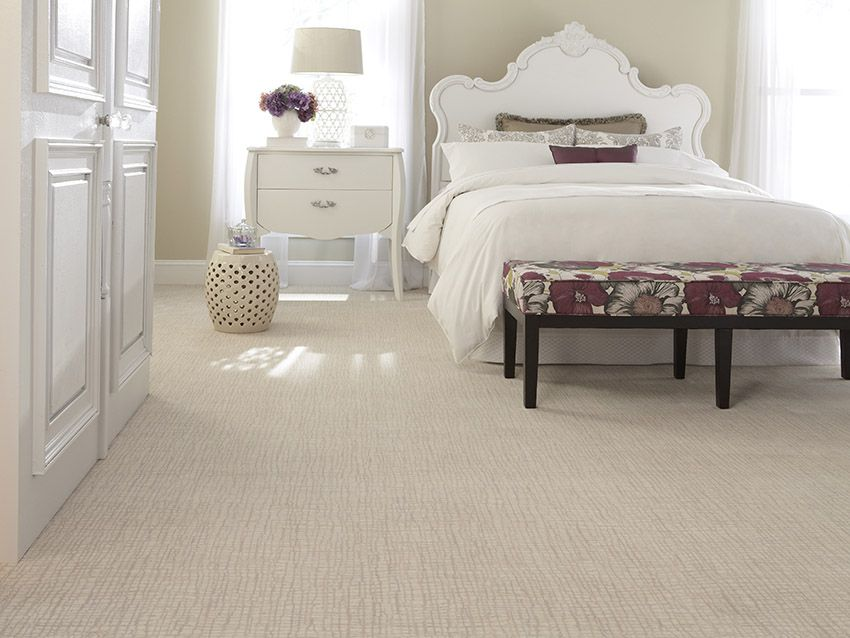 The Benefits of Wool Carpet for Pet Owners – Coles Fine Flooring