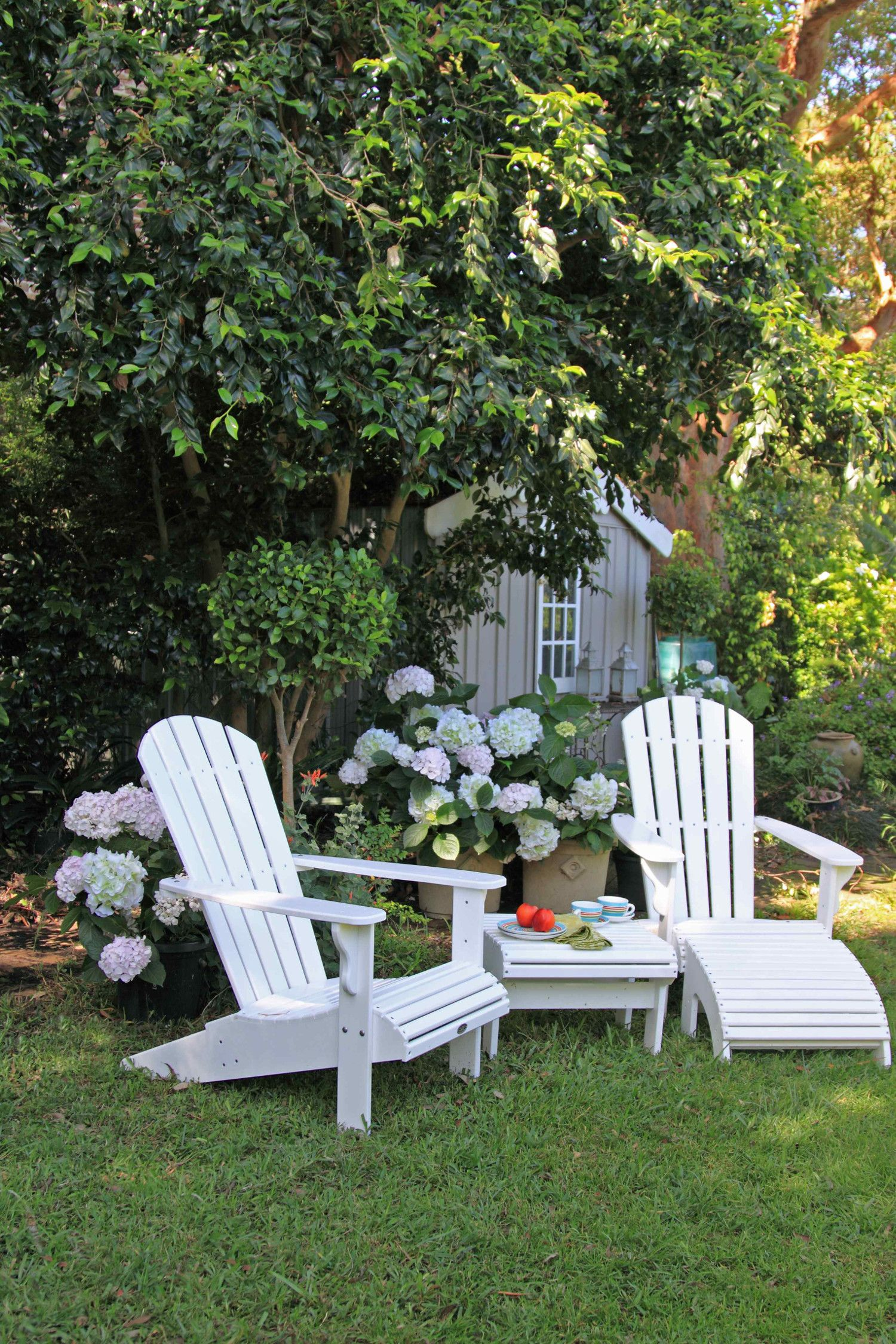 What You Need to Know About Adirondack Chairs – DIY Decorator