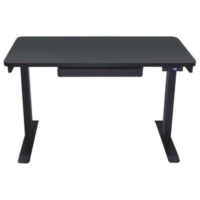 Motion Wise Home Series Black Electric Height Adjustable Sit and .