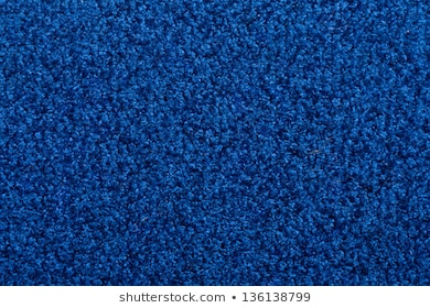 Blue Carpet Images, Stock Photos & Vectors | Shuttersto