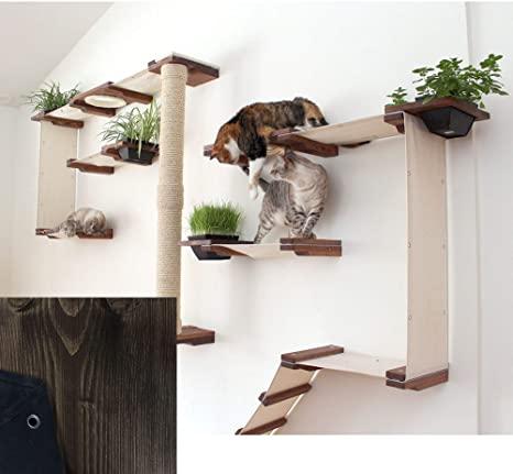 Amazon.com : CatastrophiCreations Cat Mod Garden Complex .