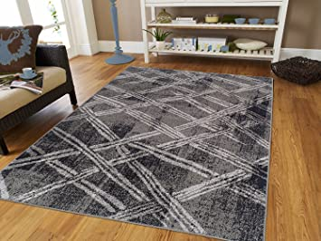 Amazon.com: Luxury Fashion Contemporary Rugs for Living Room 5x8 .