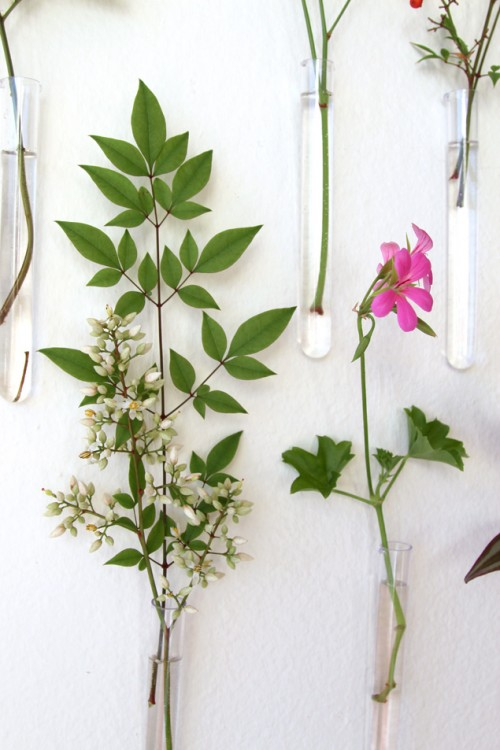 Spring Feel In Your Home: 8 DIY Wall Décor Ideas - Shelterne
