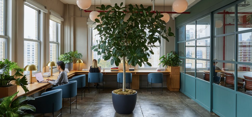 Two Workplace Experts on How to Design the Perfect Office and Why .