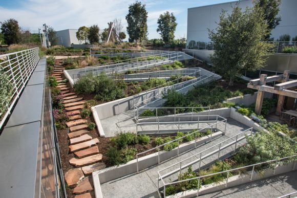 Touring Facebook's rooftop garden where the views are grand – and .