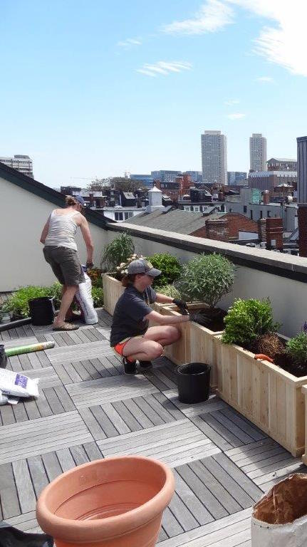 Boston-rooftop-garden-design-planting | The Captured Gard