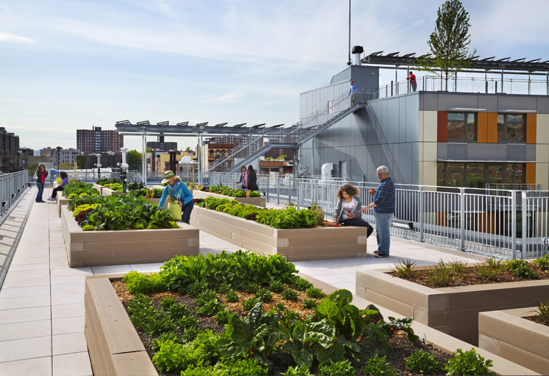Via Verde Rooftop Garden | GrowN